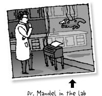 dr. mandel in the lab